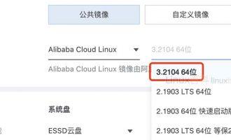 阿里云镜像Alibaba Cloud Linux 3.2104 64位系统详解
